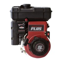 Briggs & Stratton IP 5
